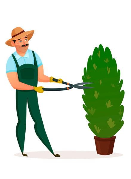Садовник алматы